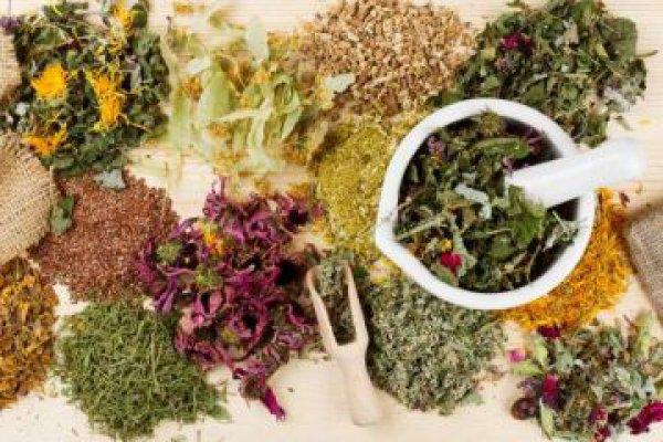 Το ελληνικό βότανο-»ασπίδα» κατά της υπέρτασης και του καρκίνου