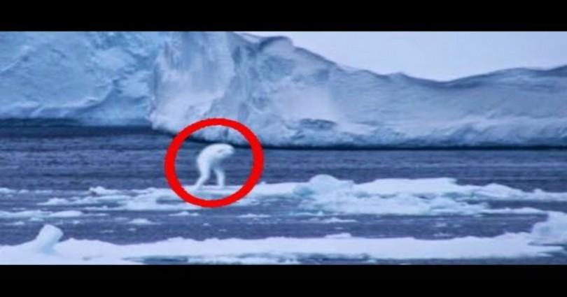 5 παράξενα πλάσματα που έπιασε ο φακός και κάνεις δεν μπόρεσε εξηγήσει την ύπαρξη τους. (video)