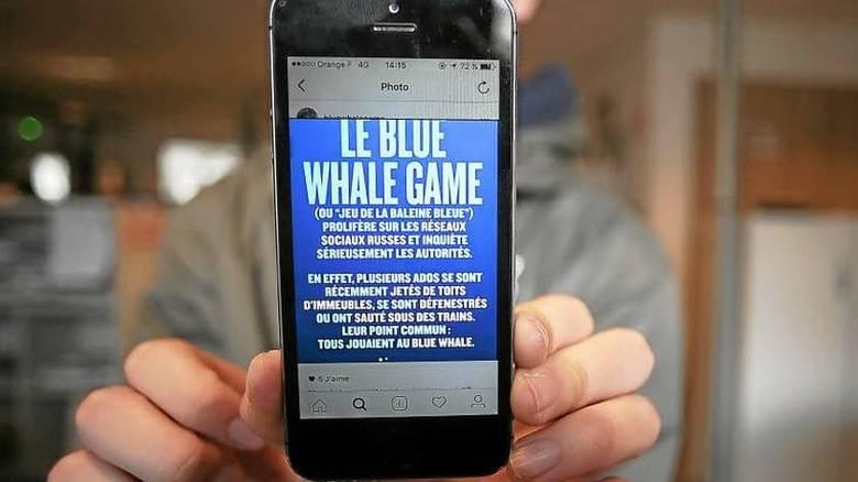 """Παρέμβαση της εισαγγελίας του Αρείου Πάγου για τη """"Μπλε Φάλαινα"""""""