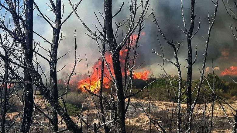 Πυρκαγιά Λαγονήσι: Κάηκε σπίτι και οχήματα – Τραυματίστηκαν τρεις πυροσβέστες