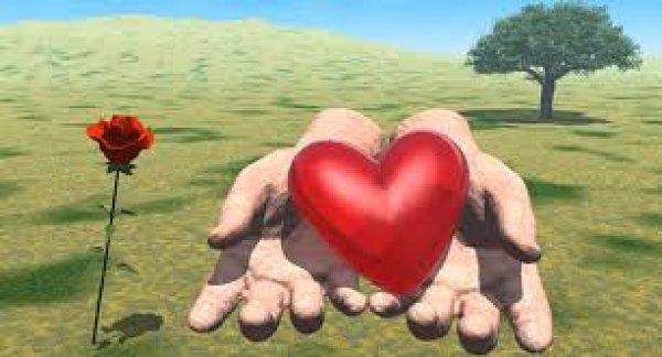 H ανθρώπινη καρδιά έχει μνήμη και λογική