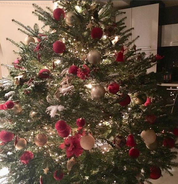 Το δέντρο-υπερπαραγωγή που στόλισε η Ευγενία Μανωλίδου (ΦΩΤΟ)