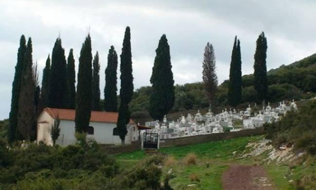 Αποκλείεται να το γνώριζες: Για ποιο λόγο φυτεύουν κυπαρίσσια στα νεκροταφεία;