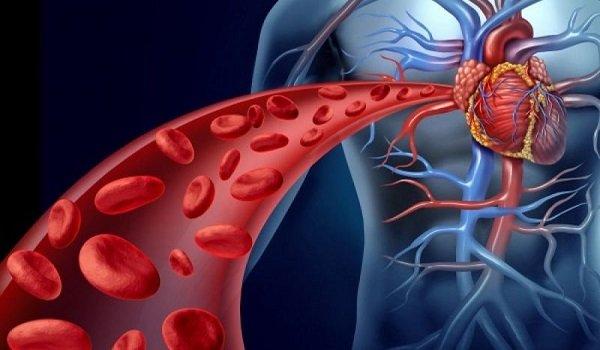 Ποια είναι τα ανησυχητικά σημάδια που μας «δείχνουν» κακή κυκλοφορία του αίματος