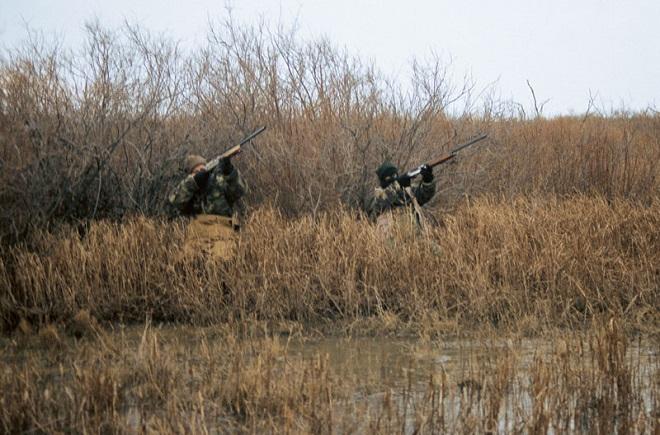 Χανιά: Τρεις συλλήψεις για παράνομο κυνήγι