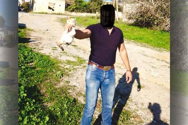 Κρήτη: Δύο χρόνια φυλάκιση και πρόστιμο στον νεαρό που στραγγάλισε γατάκι