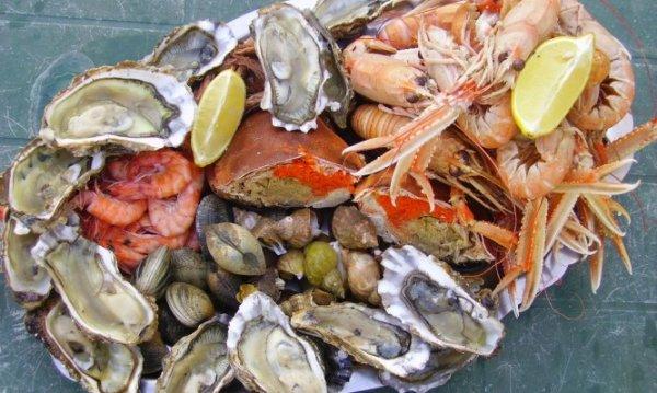 Πώς να ξεχωρίσουμε τα φρέσκα θαλασσινά – Τι κάνουμε σε περίπωση δηλητηρίασης
