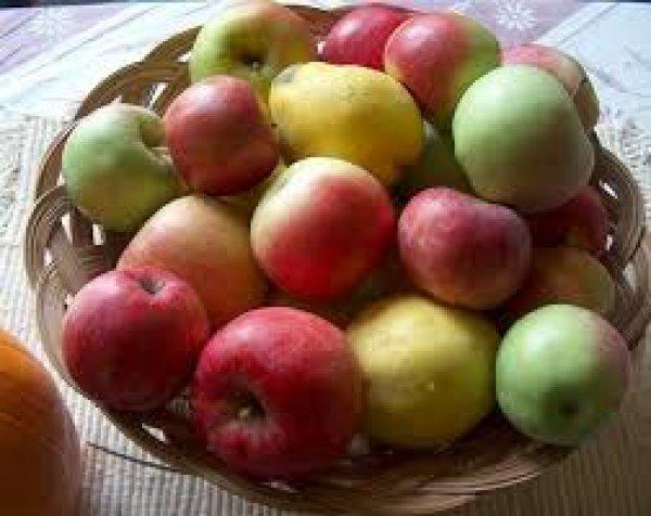 Φάρμακο κατά του καρκίνου το μήλο, έδειξε νέα έρευνα. Οι 5 μορφές που καταπολεμά