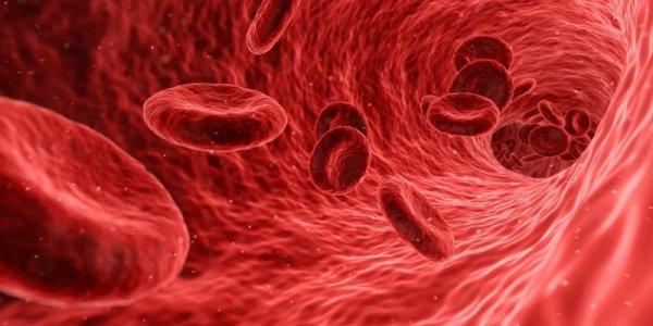 Αναιμία: Επτά ύπουλα συμπτώματα που δεν πρέπει να αγνοείτε