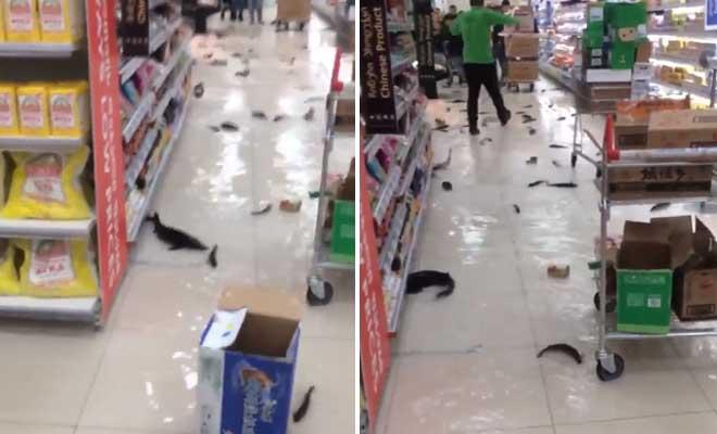 Οι πελάτες δεν πίστευαν στα μάτια τους αυτό που αντίκρισαν στο σούπερ μάρκετ Carrefour