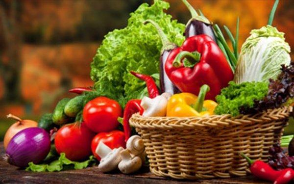 Κατασχέθηκαν στον Έβρο 400 τόνοι «τροφίμων-δηλητήριο» από την Τουρκία