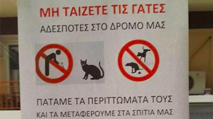 Διαχειριστής απειλεί με μηνύσεις όσους ταΐζουν αδέσποτες γάτες [εικόνα]