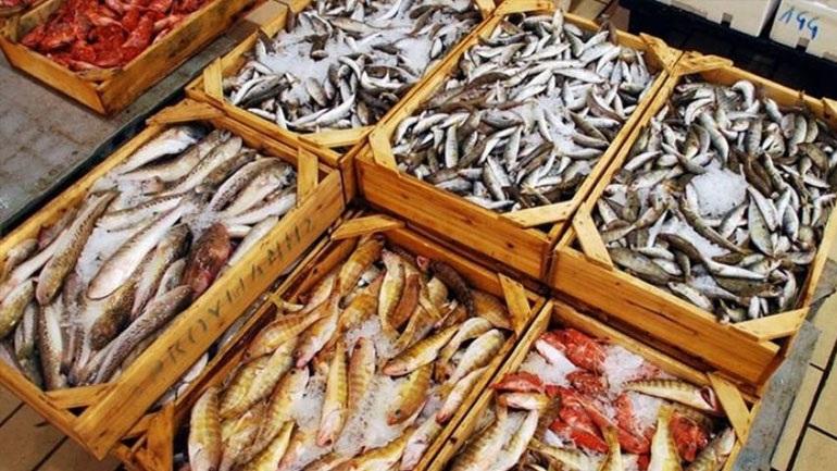 Δεσμεύτηκαν 384 κιλά ψάρια στο λιμάνι του Πειραιά