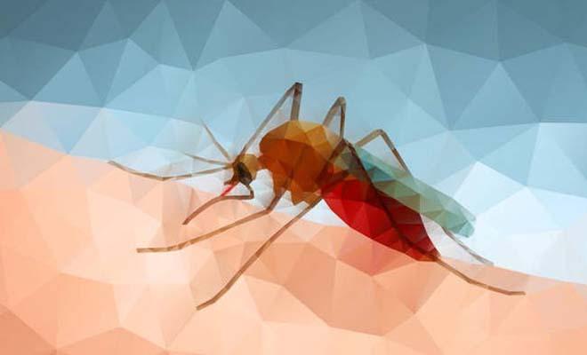 Δεν πάει ο νους σας… Το απόλυτο κόλπο για να μη σας τσιμπάνε τα κουνούπια
