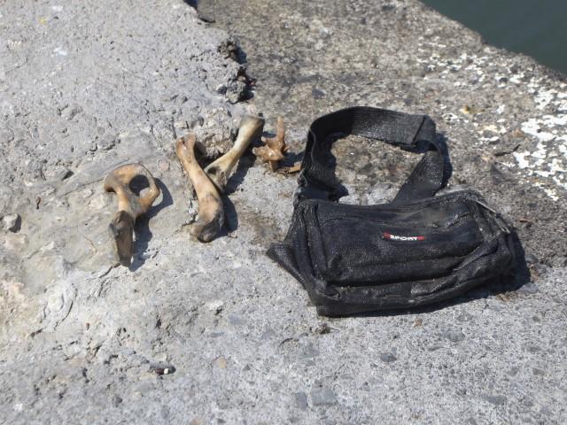 Οστά εντοπίστηκαν σε περιοχή του Κρουσώνα στο Ηράκλειο Κρήτης