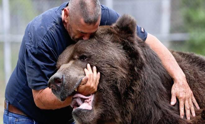 Απίστευτο Βίντεο! Δείτε Τη Σχέση Στοργής Ανθρώπου Με Αρκούδα 750 Κιλών