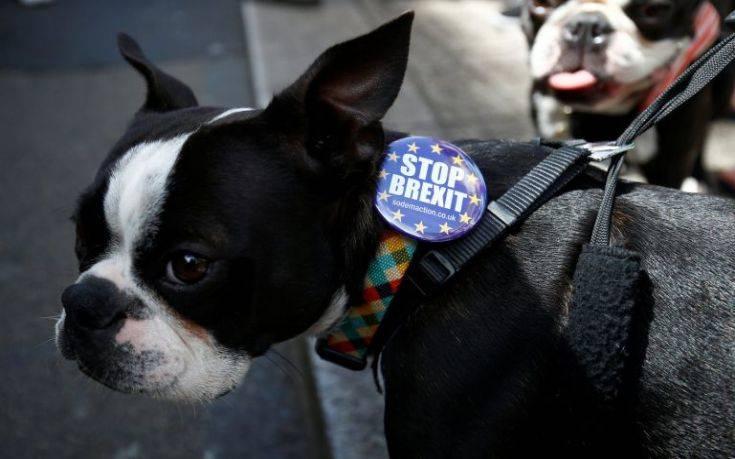 Σκύλοι διαδηλώνουν την Κυριακή στο Λονδίνο κατά του Brexit