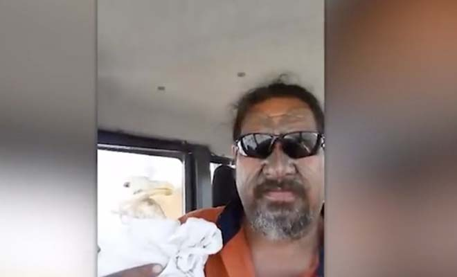 Το βίντεο του έγινε viral… Σώζει πληγωμένο γλάρο – Δεν φαντάζεστε τη συνέχεια!