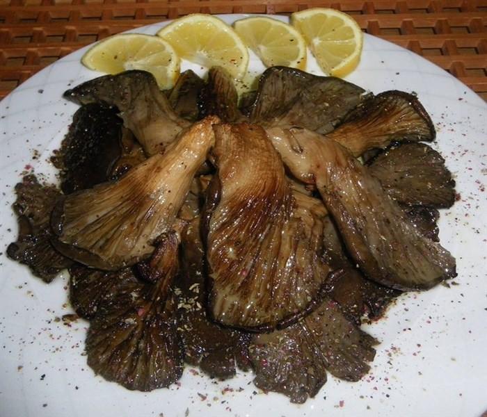 Εύκολη συνταγή για Ψητά μανιτάρια πλευρώτους με λαδορίγανη