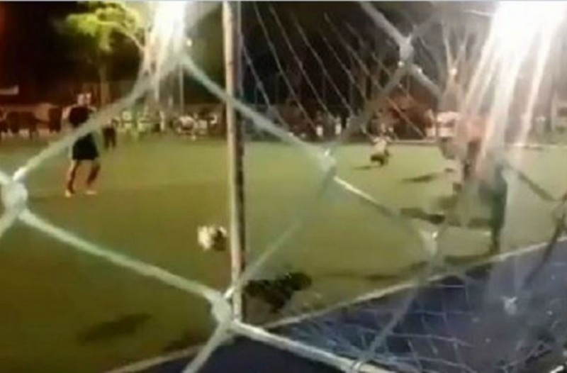 Σκύλος αποκρούει πέναλτι σε ποδοσφαιρικό αγώνα [βίντεο]