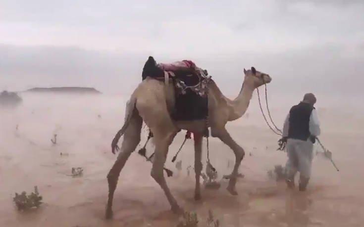 Έρημος μετατράπηκε σε βάλτο από την πολλή βροχή