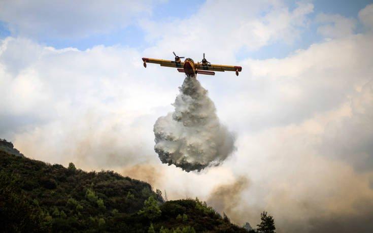 Σε ένα χρόνο κάηκαν στην Κρήτη 15.340 στρέμματα
