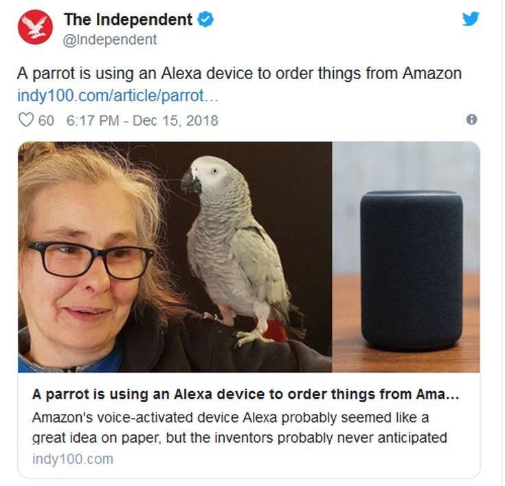 Παπαγάλος προσπαθεί να παραγγείλει φράουλες μέσω του ψηφιακού βοηθού Alexa