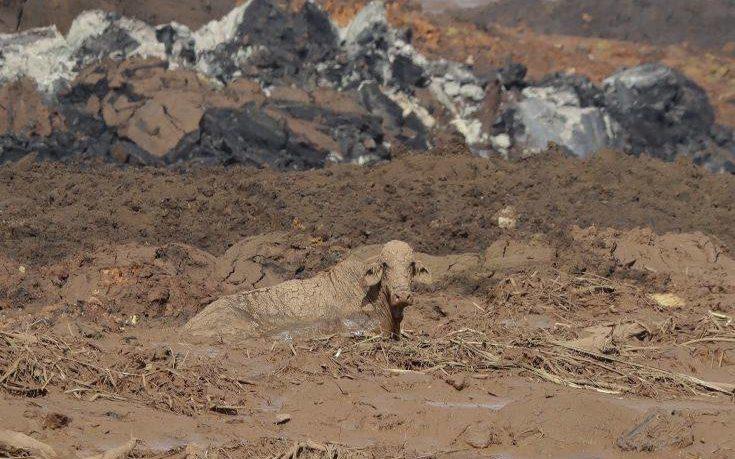 Δεν κινδυνεύει να υποχωρήσει δεύτερο φράγμα σε ορυχείο στη Βραζιλία