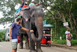 Πρεμιέρα για το «Passenger» και τον Μάριο Πρίαμο από τη Σρι Λάνκα (trailer)