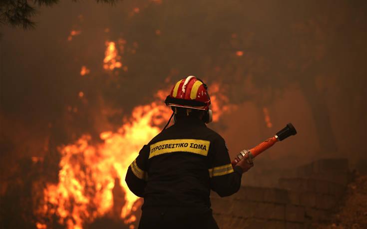 Σε εξέλιξη η πυρκαγιά στην περιοχή Λογγιές στα Τρίκαλα