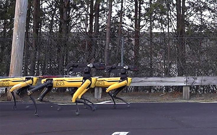 Πώς συνεργάζονται δέκα ρομπότ για να ρυμουλκήσουν ένα φορτηγό
