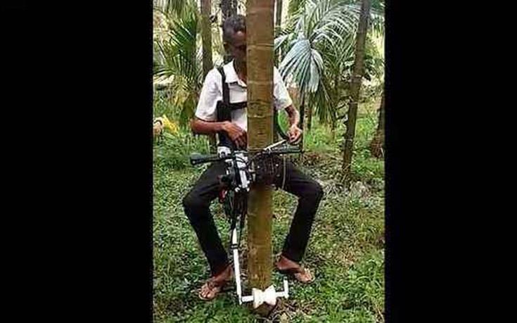 Έφτιαξε πατέντα – ασανσέρ για να ανεβαίνει στα δέντρα