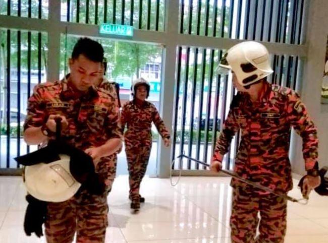 Τραγουδίστρια πήρε στο σπίτι της μια αρκούδα γιατί την πέρασε για σκύλο [φωτο]