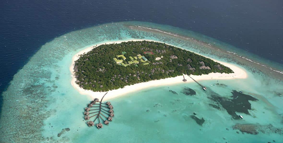 Υπερπολυτελές ξενοδοχείο στις Μαλδίβες σου πληρώνει τα πάντα για να προσέχεις θαλάσσιες χελώνες