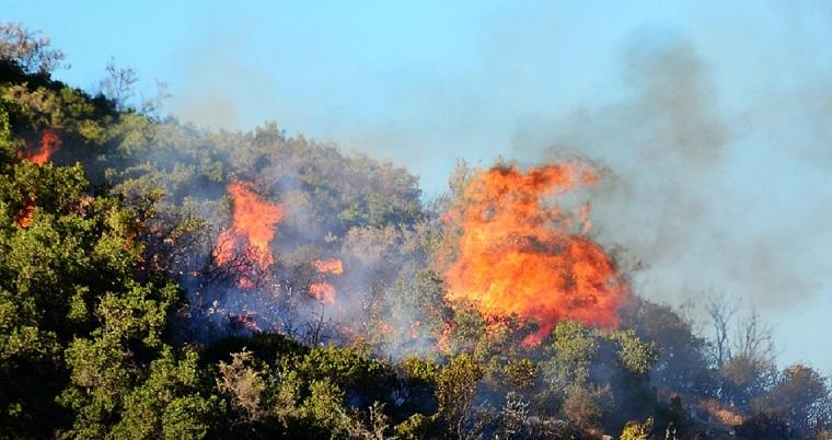 Μεγάλη πυρκαγιά στη Μάνδρα Αττικής