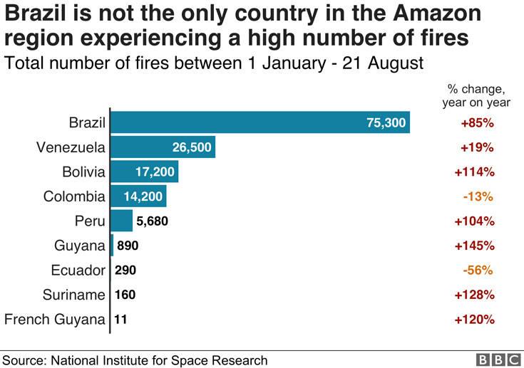 Πόσο σοβαρή είναι η κατάσταση με τις φωτιές που καίνε τον Αμαζόνιο