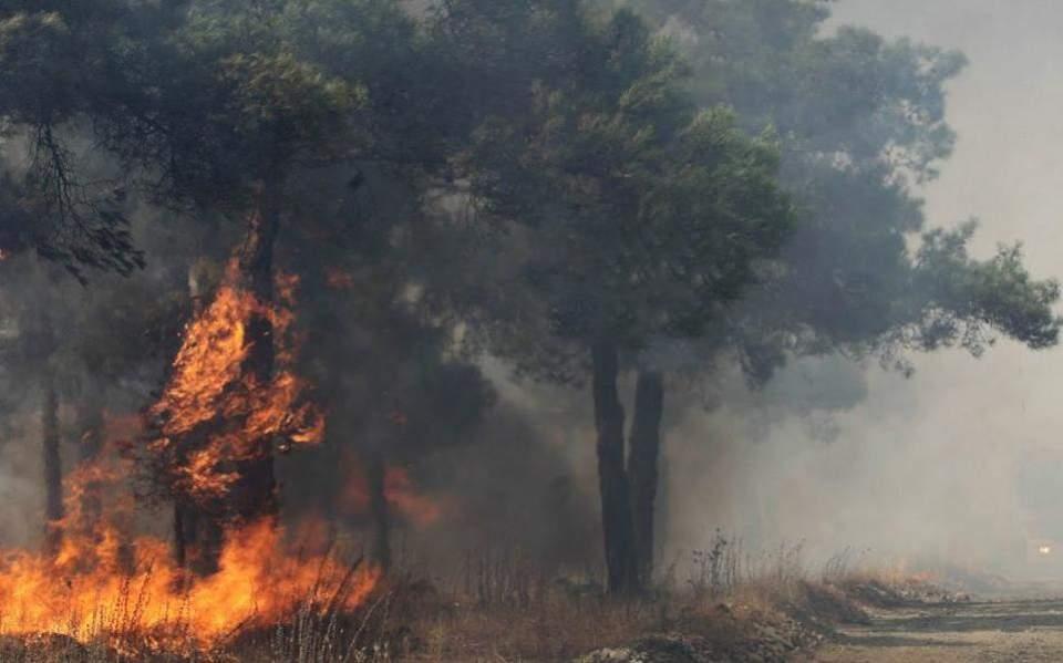 Ηράκλειο: Συνελήφθησαν 37χρονος και ανήλικος για την πυρκαγιά στο Γιούχτα
