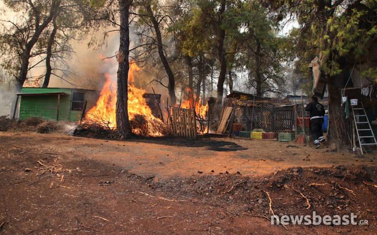 Τιτάνια μάχη των πυροσβεστών με τη φωτιά μετά την ξαφνική αναζωπύρωση στο Μακρυμάλλη