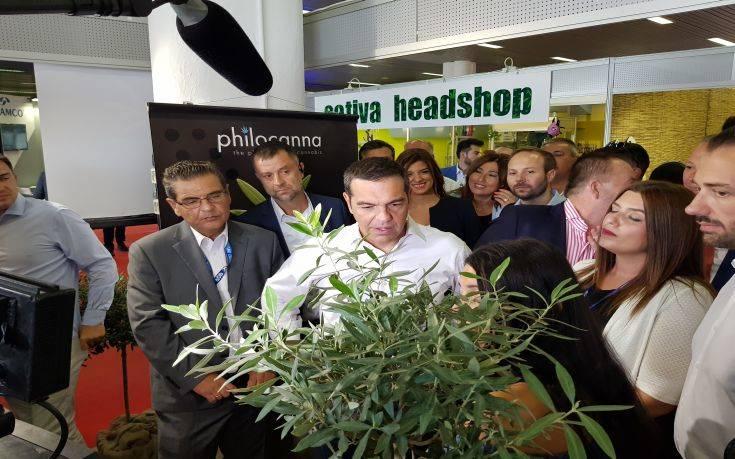 ΔΕΘ: Η επίσκεψη Τσίπρα στα περίπτερα με προϊόντα από επεξεργασία κάνναβης