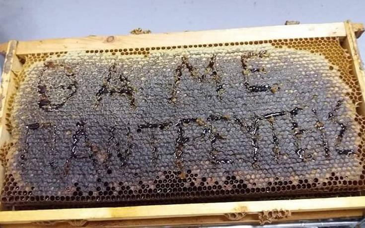 Πρόταση γάμου από… μέλι