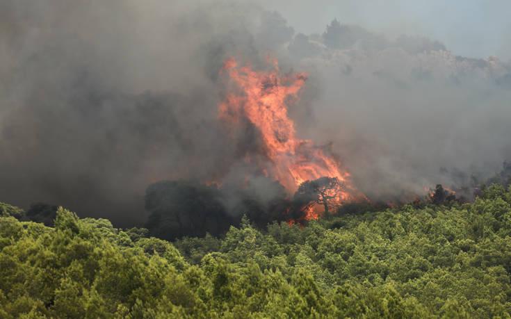 Φωτιά ξέσπασε στο Αγιονόρι Κορινθίας