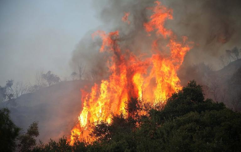 Φωτιά στην Κρήτη