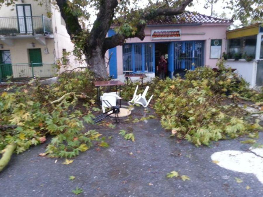 Καταστροφές από ανεμοστρόβιλο στη Μεσσηνία (εικόνες)