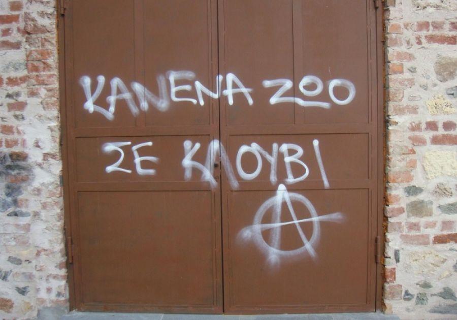 Θεσσαλονίκη: Παρέμβαση αντιεξουσιαστών στο κλαμπ που είχε σκύλους σε κλουβιά