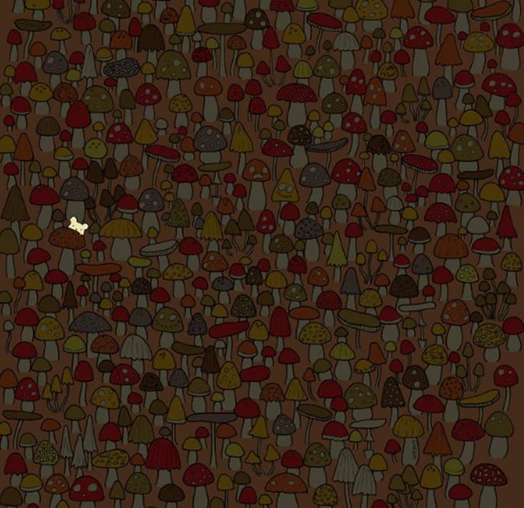 Μπορείτε να βρείτε το μικρό ποντίκι στην εικόνα;