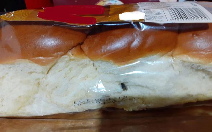 Λάρισα: Γυναίκα αγόρασε τσουρέκι από σουπερμάρκετ και βρήκε μέσα μύγα