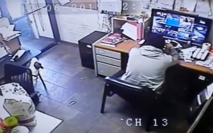 Σκύλος σέρνει την καρέκλα του και παίρνει θέση δίπλα στο αφεντικό του