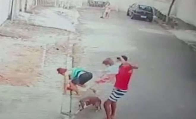 20χρονος σώζει παιδάκι από επίθεση σκύλου πιτ μπουλ [Βίντεο]