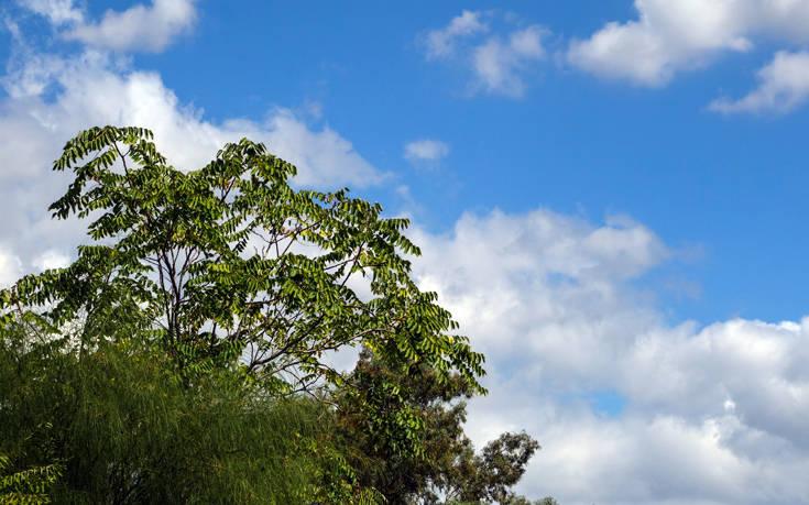 Καιρός: Άνοδος της θερμοκρασίας πριν την άφιξη της κακοκαιρίας «Ηφαιστίων»