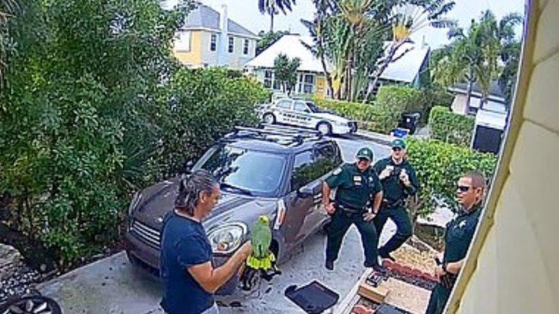 Αστυνομικοί πήγαν να σώσουν γυναίκα που φώναζε «βοήθεια», αλλά τελικά ήταν παπαγάλος